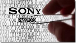 sony_hacker_110603_620x3501[1]