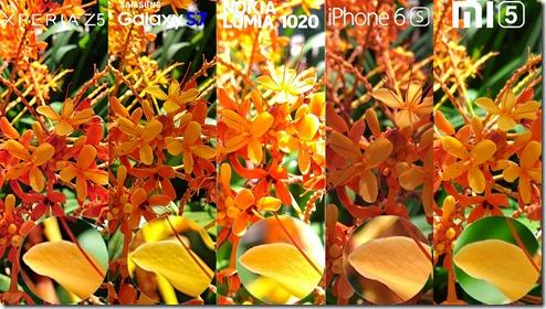 Galaxy-S7-Xperia-Z5-Lumia-1020-iphone-6s-Xiaomi-Mi-5-Camera-Review-Comaprison-15[1]